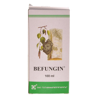 BEFUNGIN extrakt z čagy 100 ml