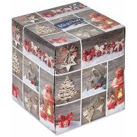 BIG SOFT Winter 2vrstvé papierové vreckovky v krabici 75 ks