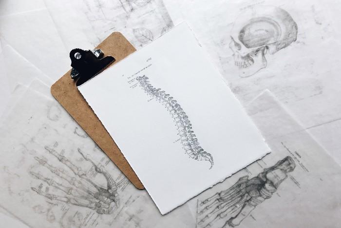 Bolesti bedrovej chrbtice