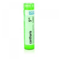 BOIRON Cantharis CH5 4 g