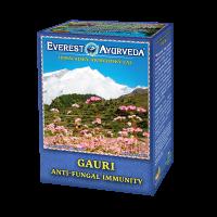 EVEREST AYURVEDA Gauri sypaný čaj 100 g