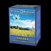 EVEREST AYURVEDA Nagara lymfatický systém a imunita sypaný čaj 100 g