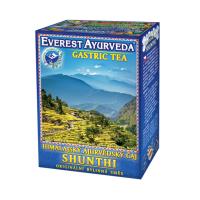 EVEREST AYURVEDA Shunthi žalúdok a črevá sypaný čaj 100 g
