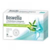 FAVEA Boswellia s chondroitínom a kolagénom 30 tabliet