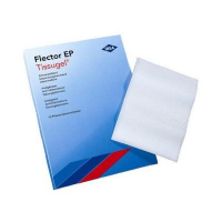FLECTOR EP liečivá náplasť 2 ks