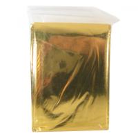 Izotermická fólia Fixaplast 220x140 striebro / zlato
