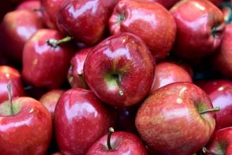 Jablčný ocot