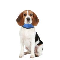 KARLIE FLAMINGO Chladiaca bandáž Fresk pre psov veľkosť S 15-30 cm