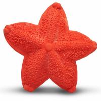 LANCO Morská hviezdica