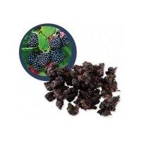 Lifefood Moruša čierna sušená BIO 100 g