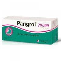 PANGROL 20 000 tablety 50 kusov