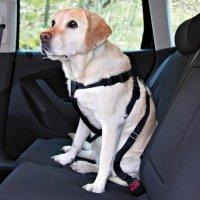 Postroj pes Bezpečnostné do auta L Trixie
