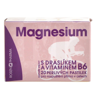 ROSEN PHARMA Magnesium 300 mg perlivé pastilky 20 tabliet