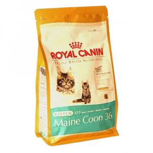 Royal canin Breed  Feline Kitten Maine Coon  400 g