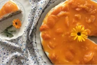 Zdravé varenie: Marhuľovo-tvarohový dezert bez múky